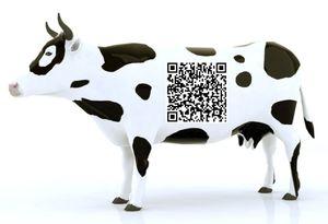 Cow qr code